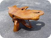 Mimpi Tree Trunk Coffee Table